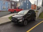 newfoundking's 2019 Ford EcoSport